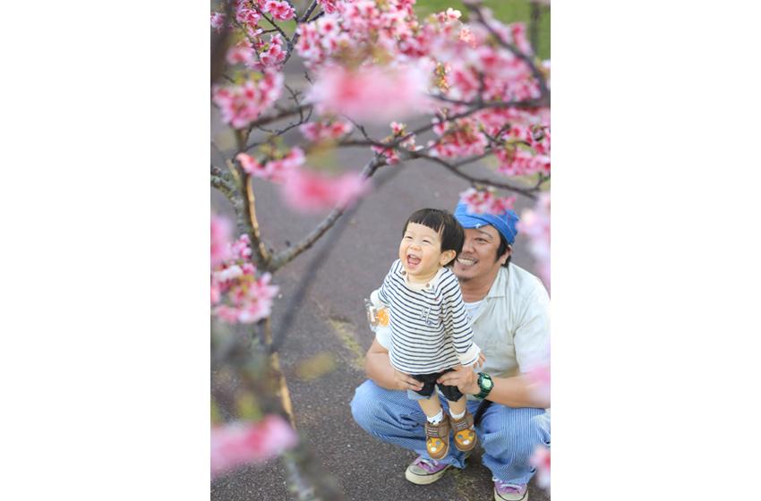 さのすけ_桜